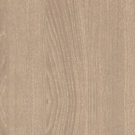 Дуб орлеанский песочный