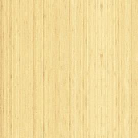 Бамбук радиальный